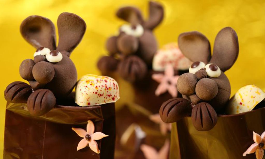 allergie au chocolat