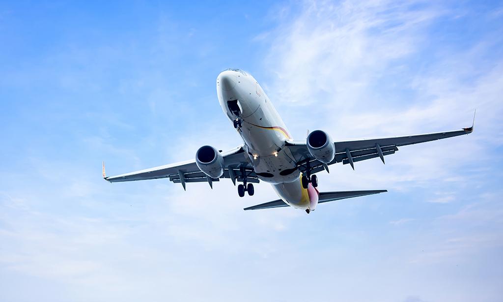 avion qui transporte des allergiques